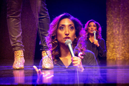 Shazia Mirza: Delo v nastajanju / A Work in Progress (16. 4. 2019)